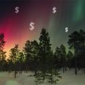 aurora lights trees