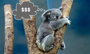 australia money dreaming