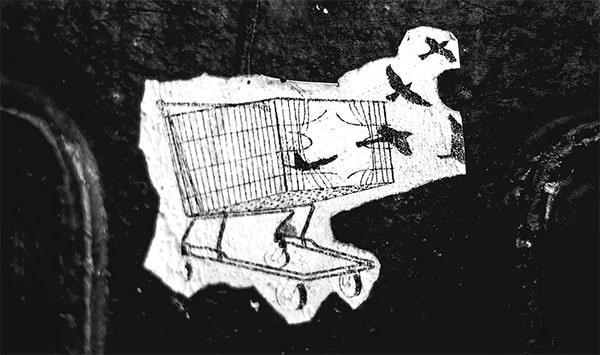 broken shopping cart birds