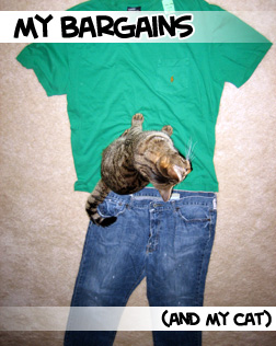 clothes and cat