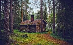 cute cabin in the woods