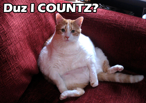 Duz I Countz? Fat Cat