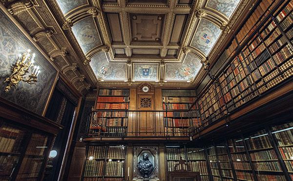 fancy pants library