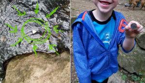 found quarter in creek