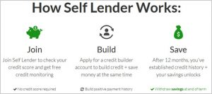 how self lender works