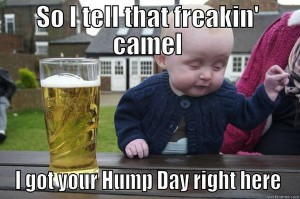 hump day camel baby