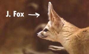 j fox
