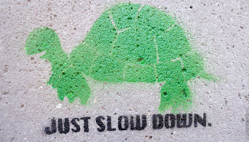 just slow down turtle