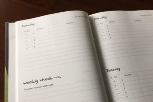 mindful budgeting 2017 daily sheets