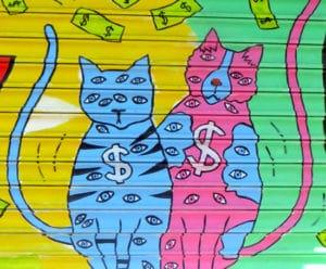 money cats eyes
