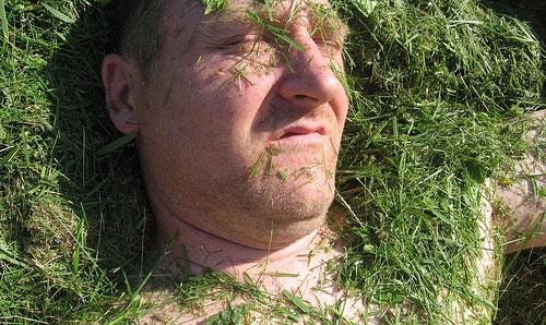 mow lawn funny