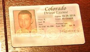 mr money mustache license