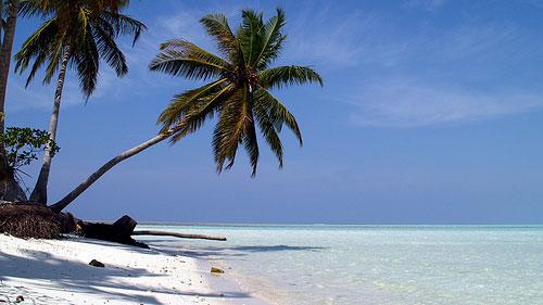 retire beach