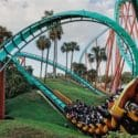 riders swoosh up and down in a loopy rollercoaster