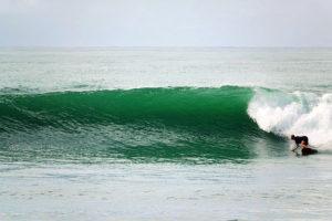 ryland surfing