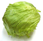 head of iceberg lettuce safe