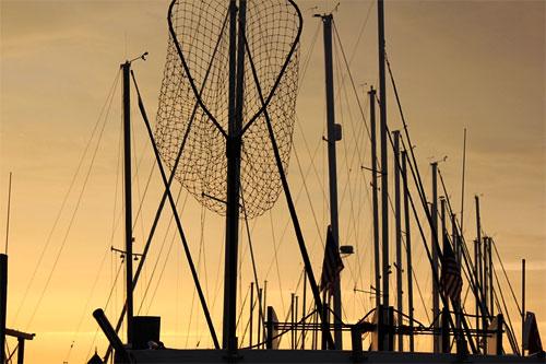 sailboats masts