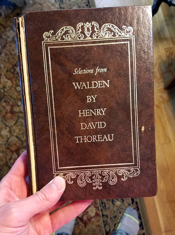 selections from walden book