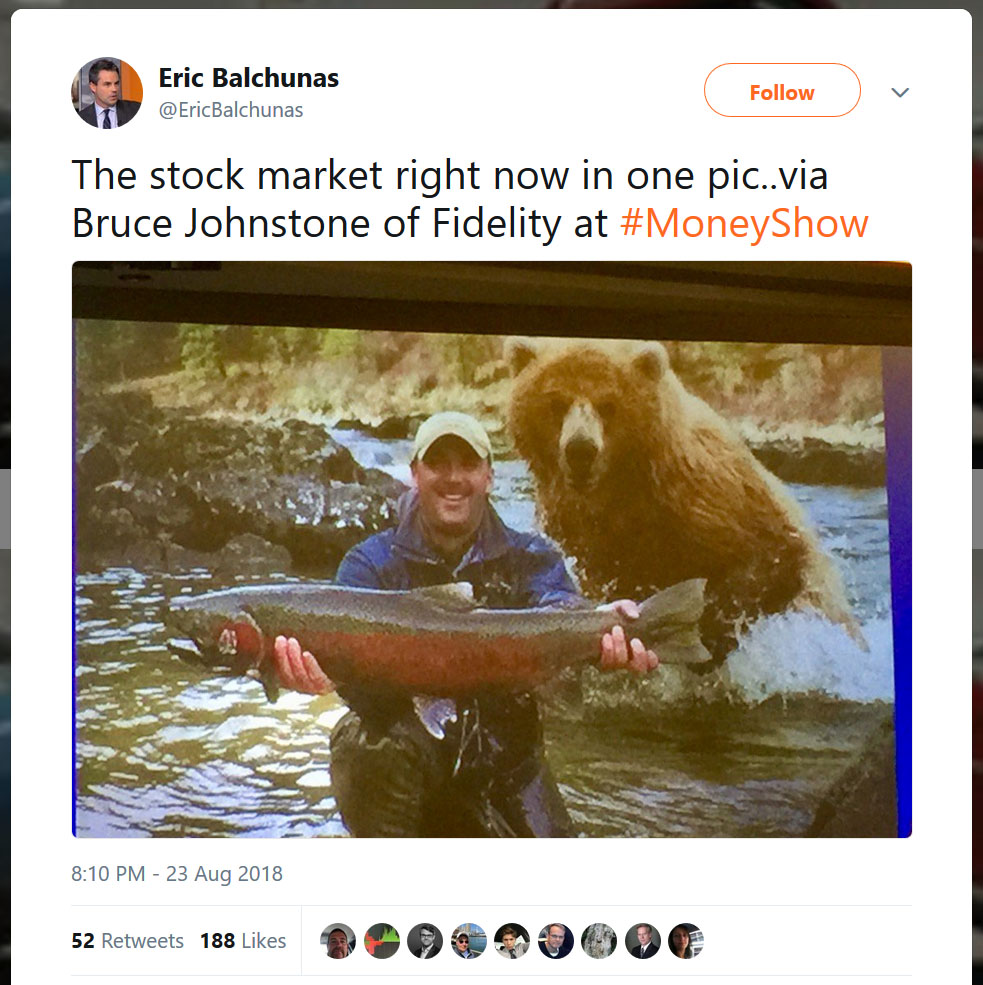 stock market bear