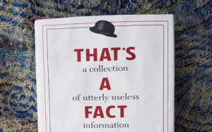 thats a fact jack