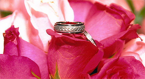 wedding bands on roses