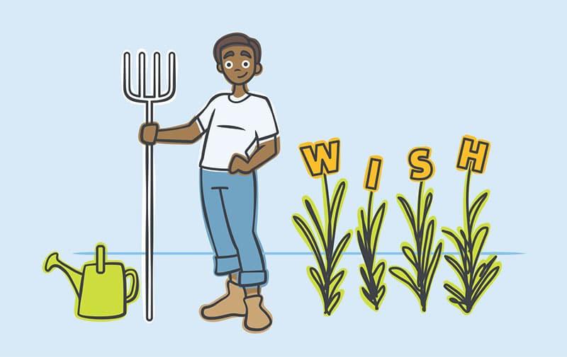 wish farm budgeting
