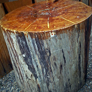 wooden stump chair table