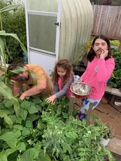 grandkids working in garden