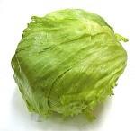 iceberg lettuce safe