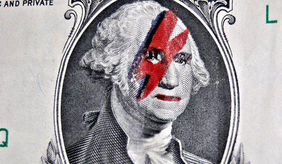 ziggy dollar